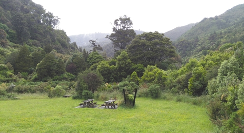 One of the many Catchpool picnic areas near the top car park adjacent to our eco-hotspot